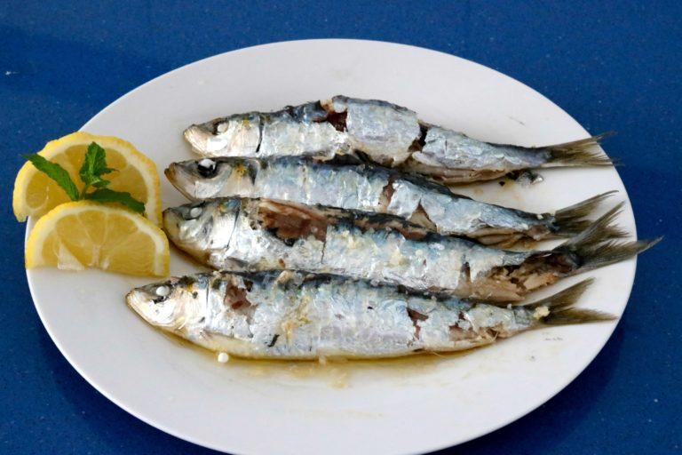 sardinas sin humos ni olores cocina a buenas horas